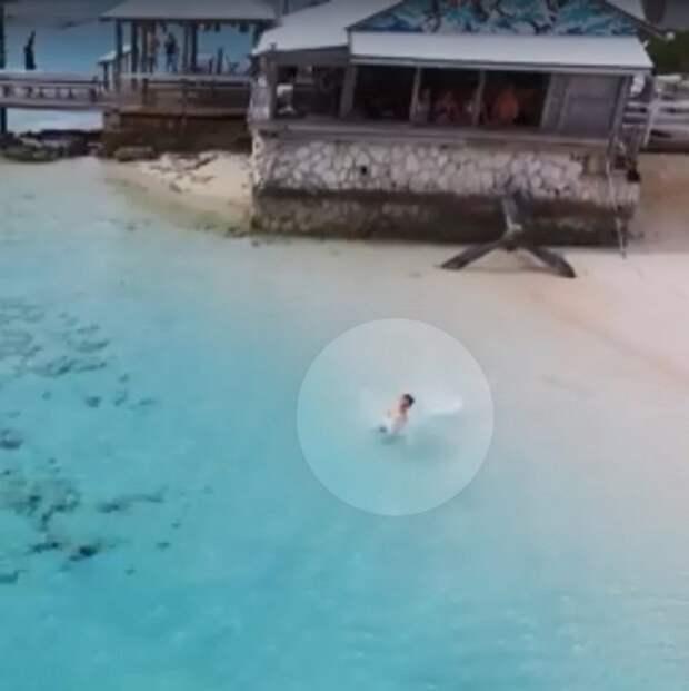 Акулы начали приближаться к ребенку, но их вовремя заметил мужчина игравший с дроном