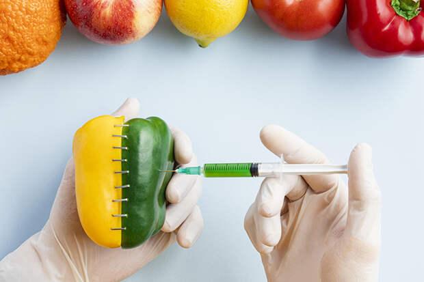 Минсельхоз отказался запретить ввоз ГМО продукции в Россию