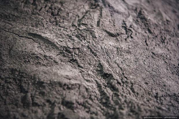 месторождение майское, чукотка, полиметалл, высушенный флотоконцентрат