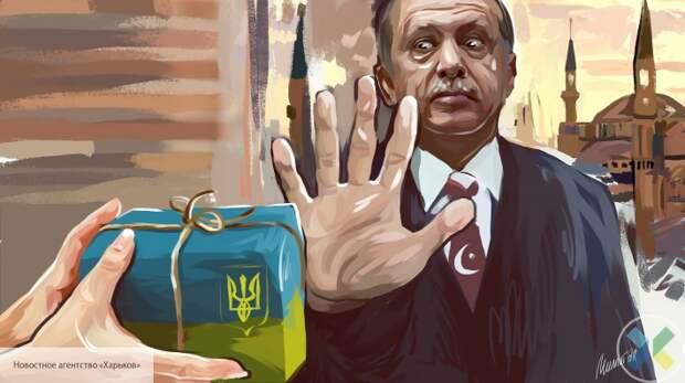 Украина рискуют стать оружием в руках Турции