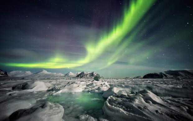 «Арктика: настоящее и будущее»