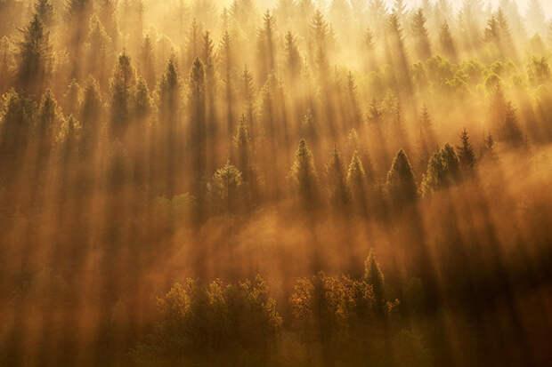 16-landscape photographers 17