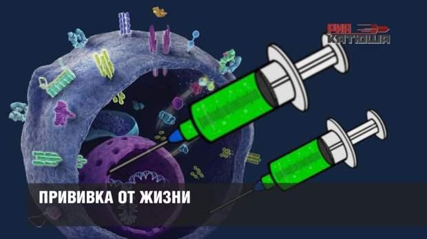 Прививка от жизни