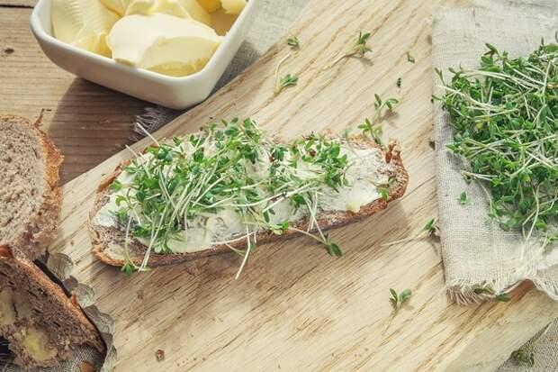 Хлеб с маслом и зеленью