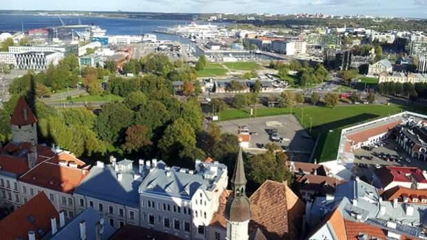 Эстония решила усилить оборону в Финском заливе