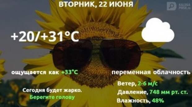 Прогноз погоды в Калуге на 22 июня