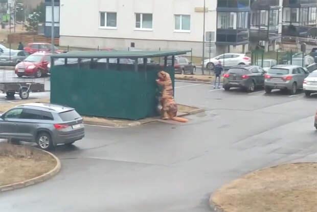 Житель Ленобласти пошёл выносить мусор в костюме динозавра во время режима самоизоляции