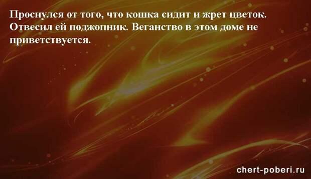Самые смешные анекдоты ежедневная подборка chert-poberi-anekdoty-chert-poberi-anekdoty-05540603092020-11 картинка chert-poberi-anekdoty-05540603092020-11