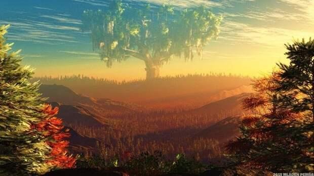 """У """"столовых гор"""" нашли корни."""