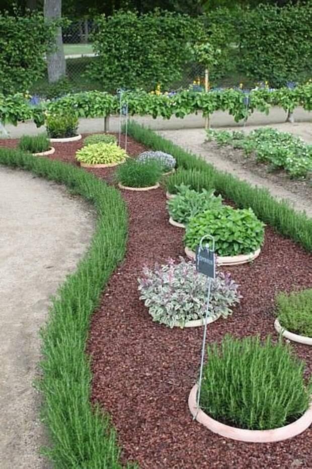 Полезное применение пластиковых горшков на огороде