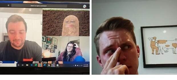 Непростая удаленка: 19 смешных и нелепых случаев на онлайн-совещаниях во время карантина