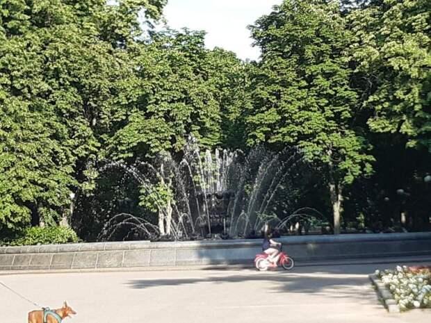 Фото дня: фонтан на Новопесчаной снова работает Фото: Дмитрий Спасский