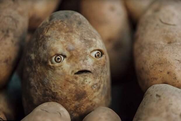 Чужая картошка в украинском борще