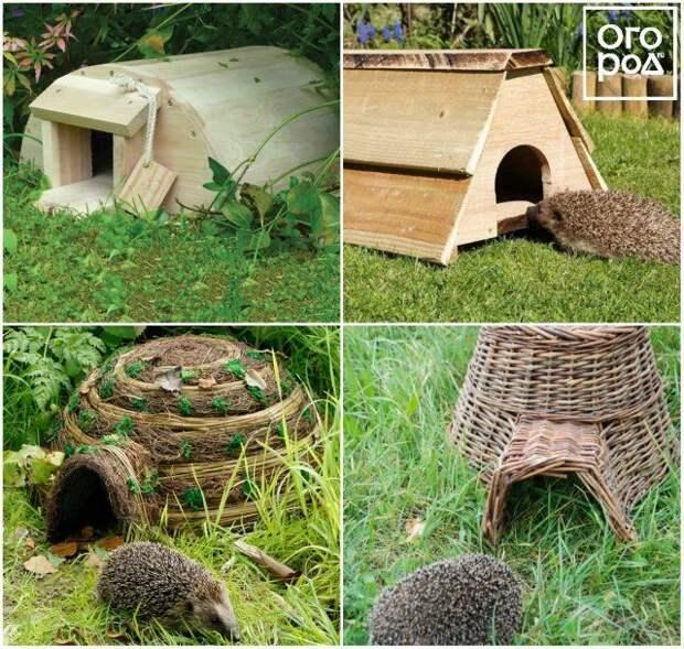 Домик для лесного ежа на даче