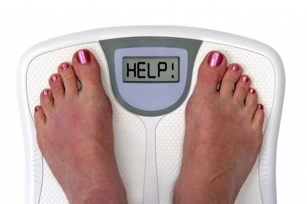 Картинки по запросу поправиться после диеты