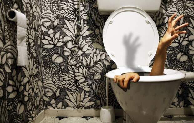 «Умный» туалет способен моментально брать анализы и выявлять болезни