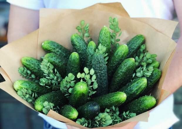 Букет из огурцов может стать отличным подарком / Фото: eatbouquet.ru