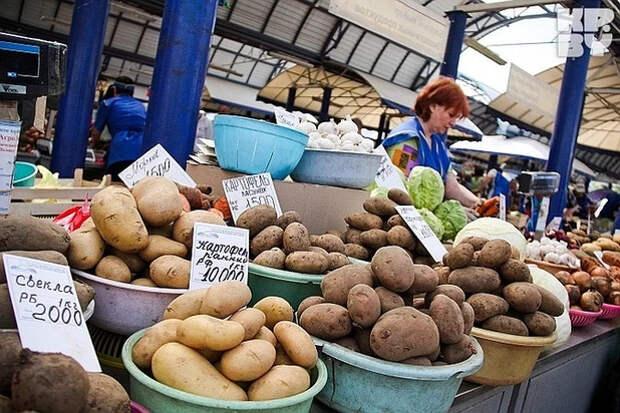"""Раскрыта главная """"засада"""" с ростом цен на продукты Фермерские предсказания"""