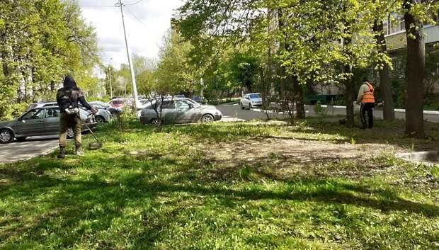 Подрядчик приступил к окосу травы в микрорайоне Климовск