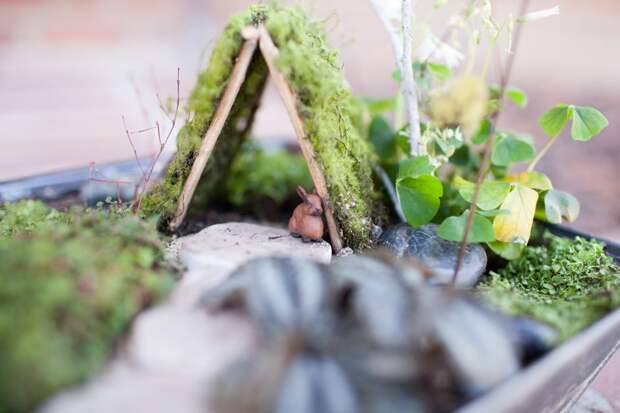 Миниатюрные сады