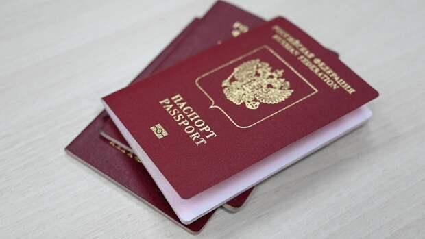 Депутат Шолохов рассказал об упрощенной процедуре получения гражданства России звездами