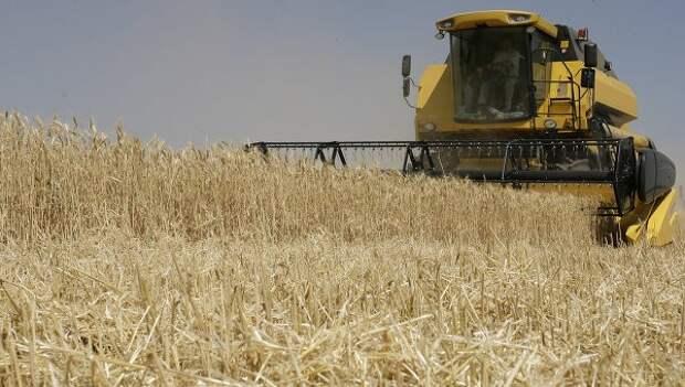 Самый большой в истории региона урожай зерновых собрали в Приамурье