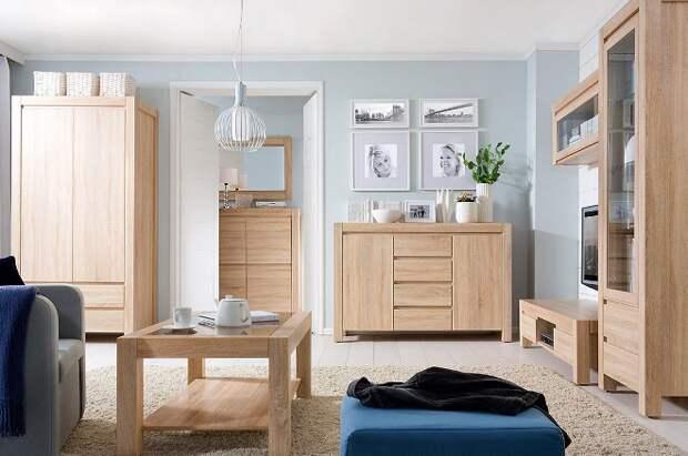 Коричневая мебель в интерьере: сочетания, оттенки (90 фото)