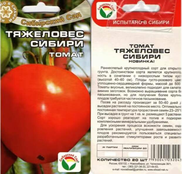https://ranchomoe.ru/wp-content/uploads/2018/11/semena-sibirskogo-tyazhelovesa.jpg