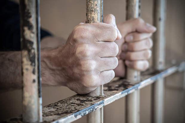 Британца отправили в тюрьму за секс с курами