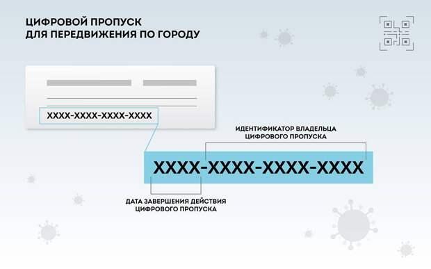 Цифровой пропуск Блог Сергея Собянина