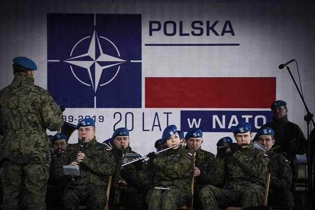 Польский жертвенный баран, или Кому котлетки по-натовски