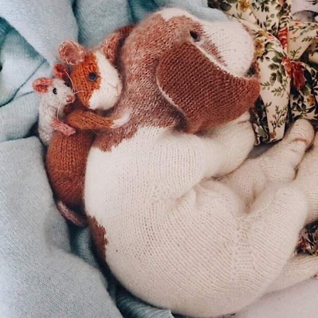 Вязаные звери Клэр Гарланд настолько реалистичны, что мне сначала показалось, что они живые