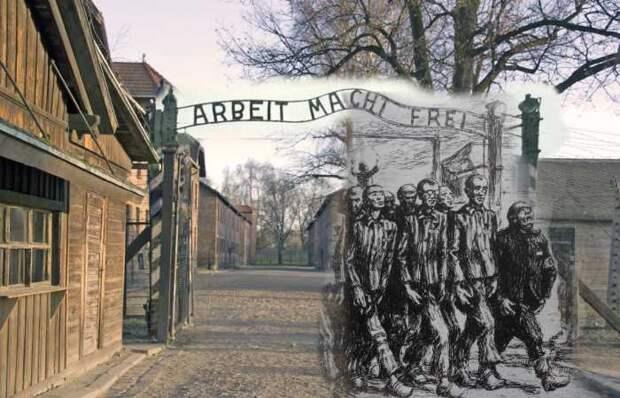 Тайные любовники из Освенцима: Встреча 72 года спустя