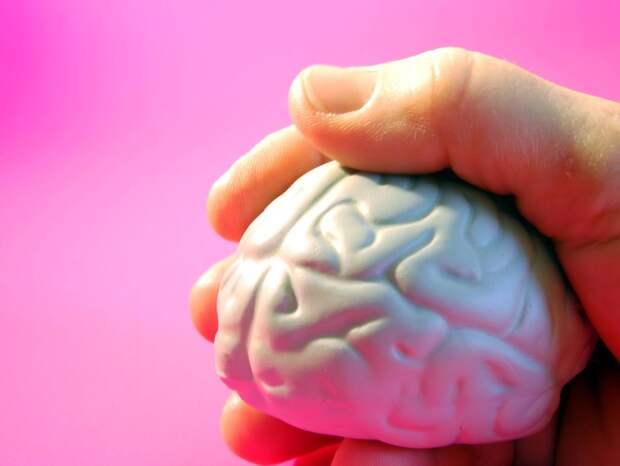 Ученый назвал метод борьбы со старением мозга