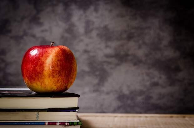Московские школы готовят профессионалов будущего. Фото: pixabay.com