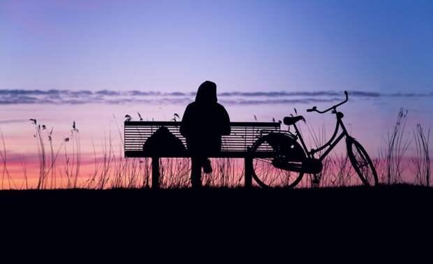 Сотрудники Мосприроды разберутся с исчезновением скамеек в Химкинском лесопарке