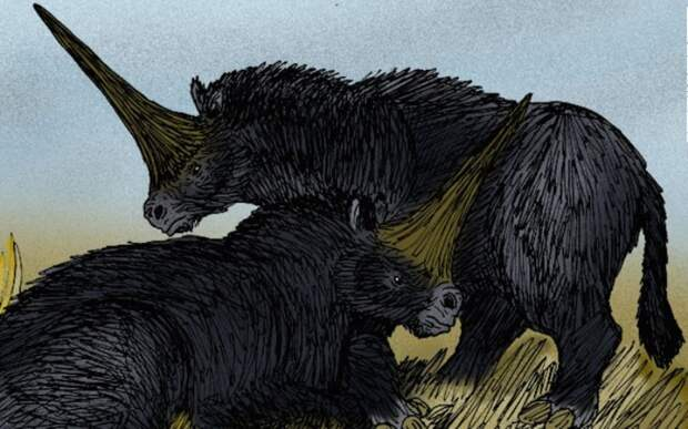 Cибирский единорог: существо, найденное в вечной мерзлоте