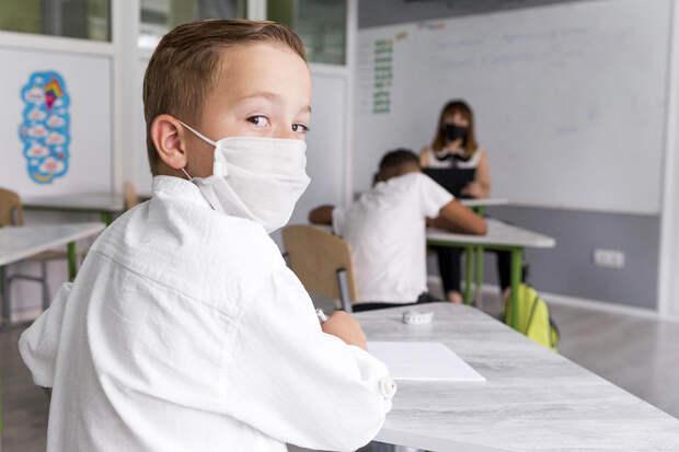 Минпросвещения ответило на слухи о  переводе школ на дистанционное обучение
