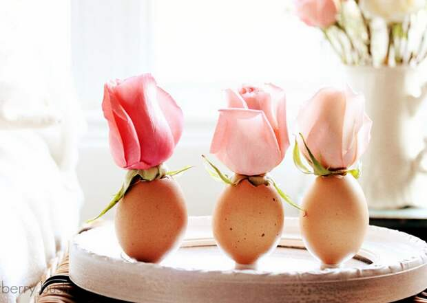 Интересные идеи из яичной скорлупы
