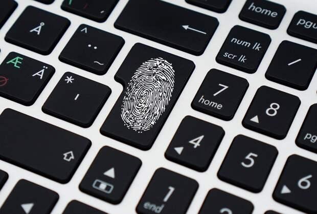 «Единая Россия» продолжит работу над обеспечением безопасности пользователей в сети