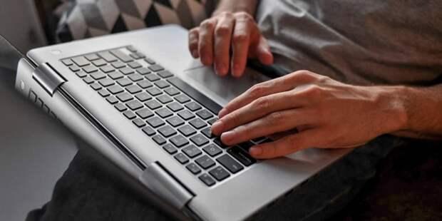 На mos.ru заявление на участие в электронном голосовании подали 150 тыс человек. Фото: Ю. Иванко mos.ru