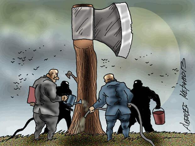 Олигархам узаконили захваченную зелень: вопиющую «амнистию» одобрила Госдума