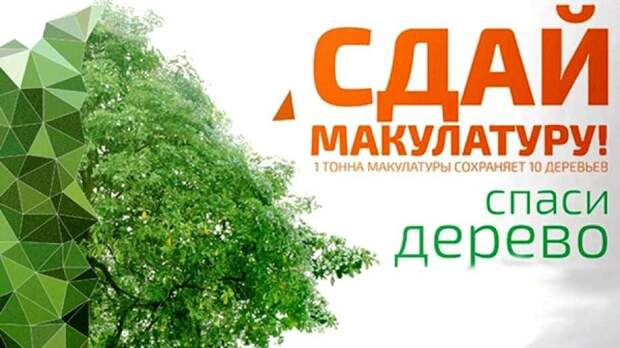 Феодосийцев приглашают поддержать акцию «Сдай макулатуру – спаси дерево»