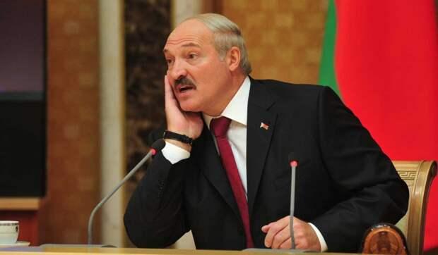 Конституционную реформу Лукашенко назвали приманкой для народа
