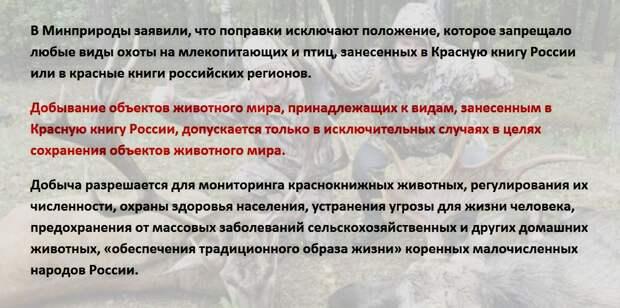 Подарок избранным живодёрам: в России разрешили убийство животных, занесённых в Красную книгу