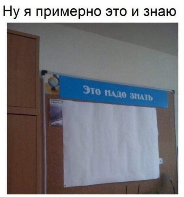Фотомемы мемы, надписи, юмор
