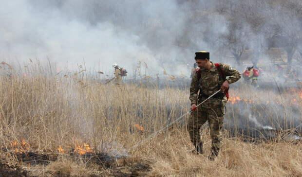 Насевере Приморья горит более трёх тысяч гектаров леса