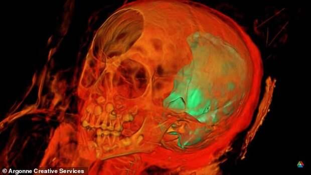 Рентген показал, что находится внутри 1900-летней египетской мумии