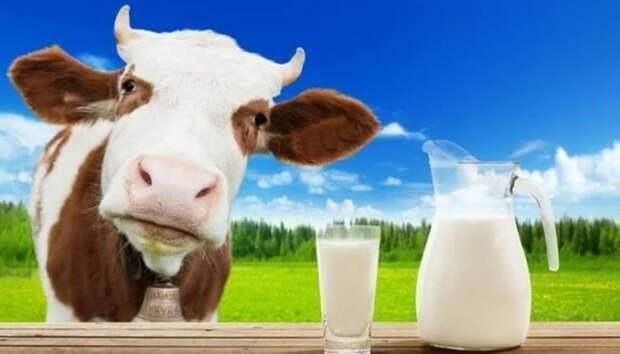 Коровье молоко представляет смертельную опасность для детей
