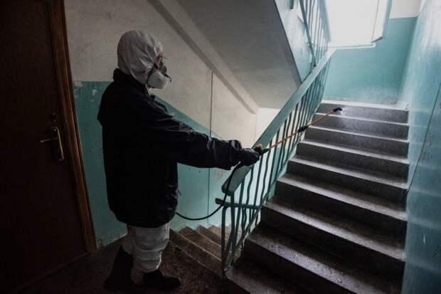 В правительстве Севастополя сообщили о липовой дезинфекции подъездов